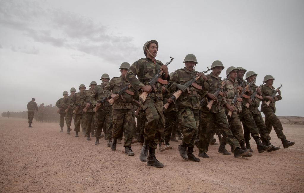 Algérie. Impropable sortie de crise - Khadija Mohsen-Finan
